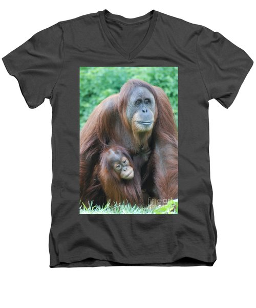 Orangutan Men's V-Neck T-Shirt by DejaVu Designs