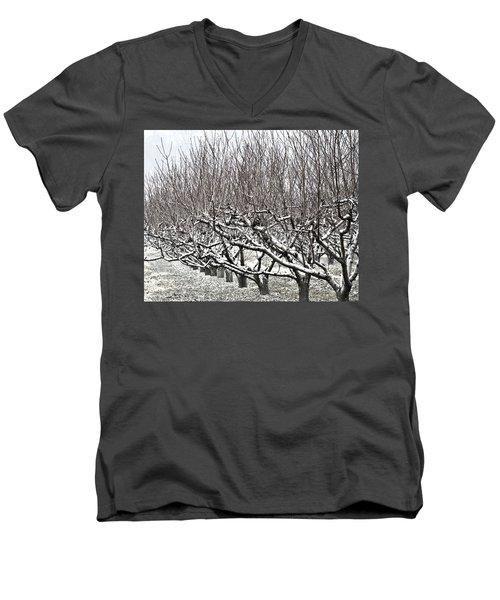 Orchard In Winter Men's V-Neck T-Shirt