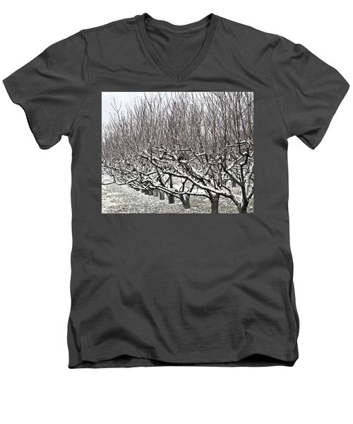 Orchard In Winter Men's V-Neck T-Shirt