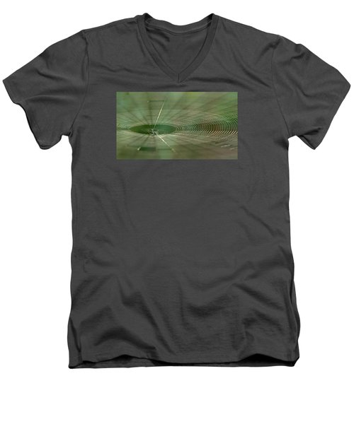 Men's V-Neck T-Shirt featuring the photograph Orchard Orbweaver #2 by Paul Rebmann