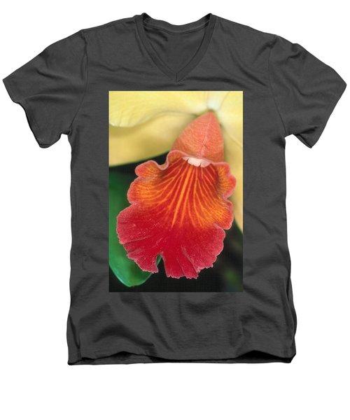 Orchid 16 Men's V-Neck T-Shirt