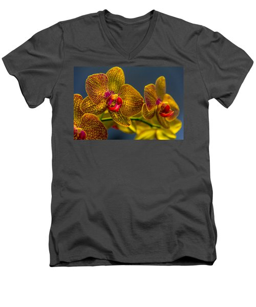 Orchid Color Men's V-Neck T-Shirt by Marvin Spates