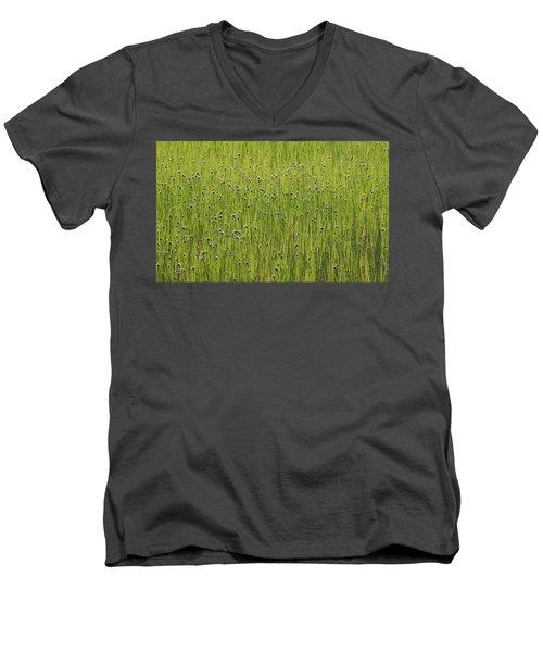 Organic Green Grass Backround Men's V-Neck T-Shirt