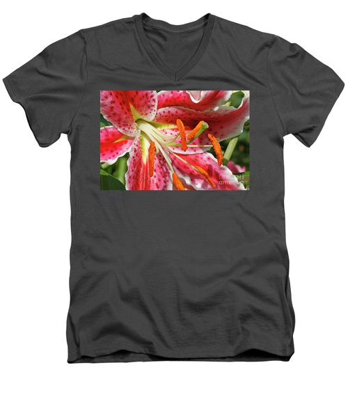 Oriental Lily Men's V-Neck T-Shirt
