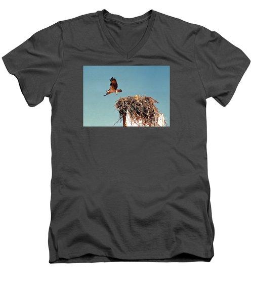 Osprey Men's V-Neck T-Shirt by Phyllis Kaltenbach
