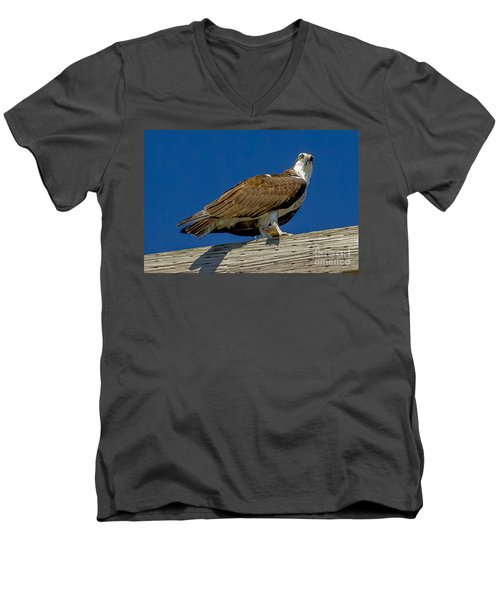 Osprey With Fish In Talons Men's V-Neck T-Shirt by Dale Powell