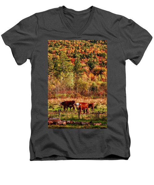 Men's V-Neck T-Shirt featuring the photograph Cow Complaining About Much by Jeff Folger