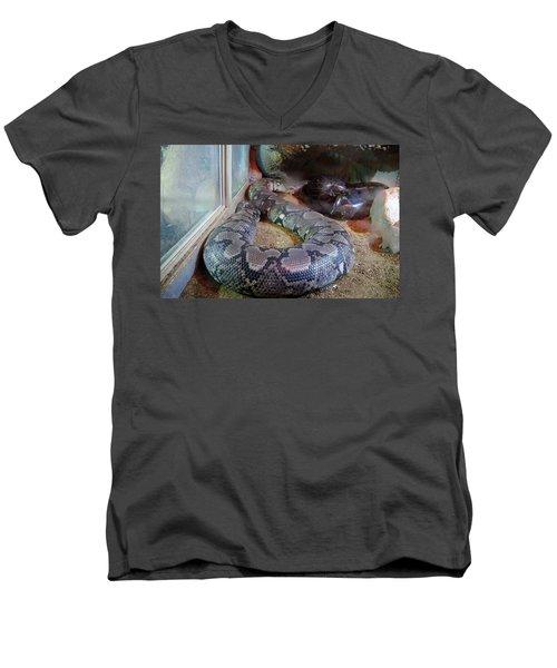 Out Of Africa  Black Snake Men's V-Neck T-Shirt