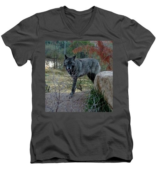 Out Of Africa Black Wolf Men's V-Neck T-Shirt