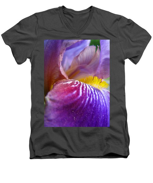 Men's V-Neck T-Shirt featuring the photograph Out Of This World by Brooks Garten Hauschild