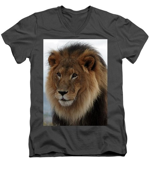 Out Ofafrica  Lion 4 Men's V-Neck T-Shirt