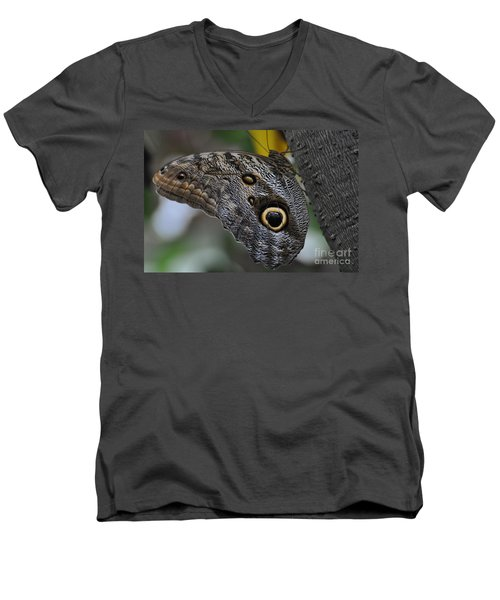 Men's V-Neck T-Shirt featuring the photograph Owl Butterfly by Bianca Nadeau