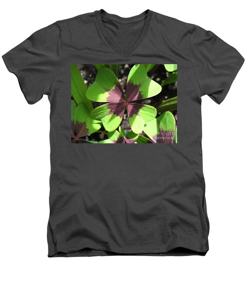 Oxalis Deppei Named Iron Cross Men's V-Neck T-Shirt