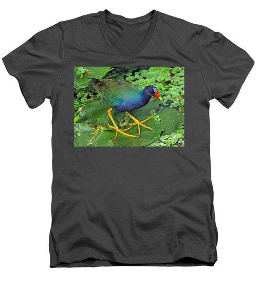 Purple Gallinule Feet Men's V-Neck T-Shirt
