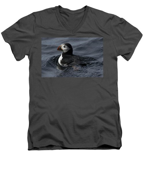 Men's V-Neck T-Shirt featuring the photograph Paddling Puffin by Daniel Hebard