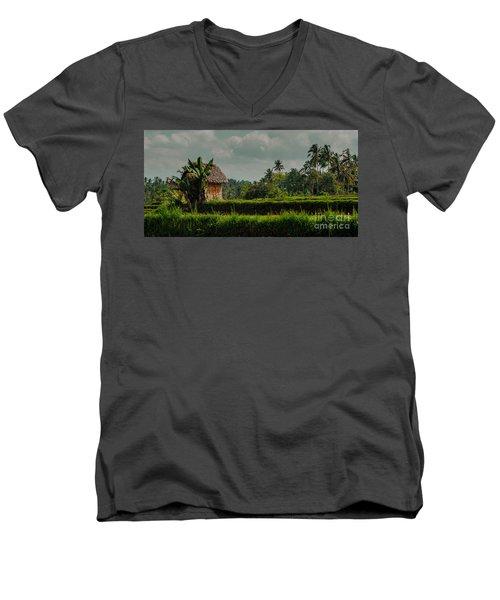 Paddy Fields Men's V-Neck T-Shirt