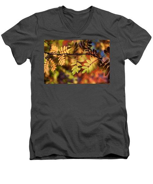 Paint  Men's V-Neck T-Shirt by Aaron Aldrich