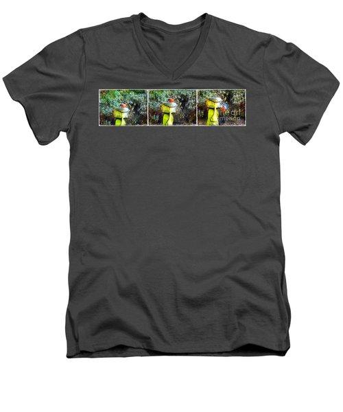 Painted Bullfinch Trio Men's V-Neck T-Shirt