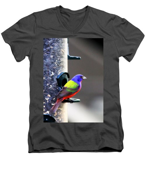 Painted Bunting - Img 9757-002 Men's V-Neck T-Shirt