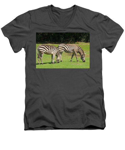 Men's V-Neck T-Shirt featuring the photograph Pair Of Zebras by Charles Beeler