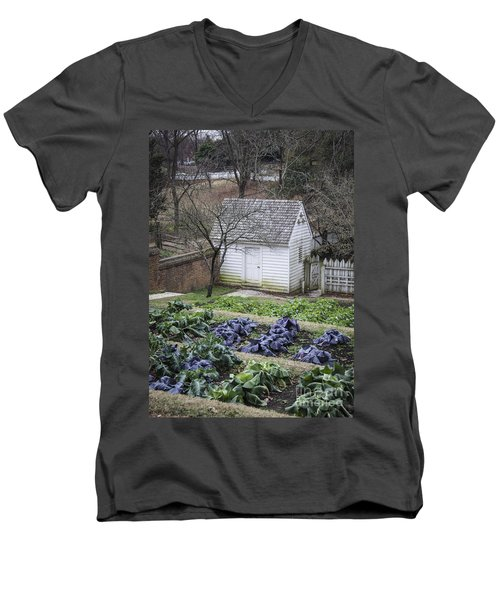 Palace Kitchen Winter Garden Men's V-Neck T-Shirt