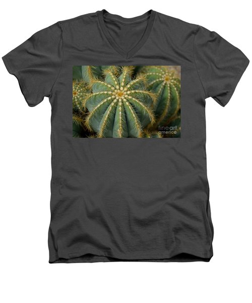 Parodia Magnifica Men's V-Neck T-Shirt