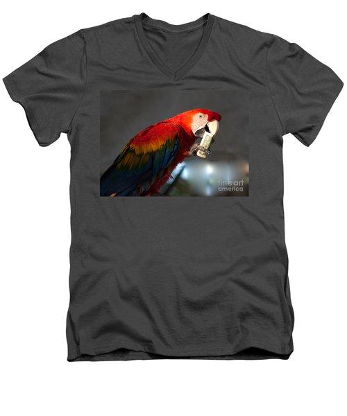 Men's V-Neck T-Shirt featuring the photograph Parrot Eating 1 Dollar Bank Note by Gunter Nezhoda