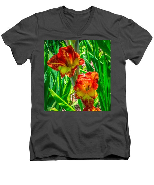Men's V-Neck T-Shirt featuring the photograph Parrot Gladiolus by Rob Sellers