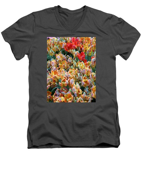 Parrot Tulips Men's V-Neck T-Shirt by Tanya  Searcy