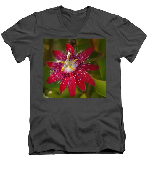 Men's V-Neck T-Shirt featuring the photograph Passion Flower by Jane Luxton