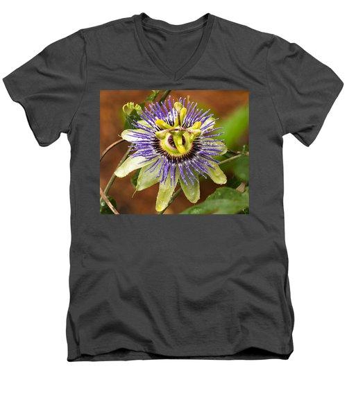 Passion Flower Men's V-Neck T-Shirt