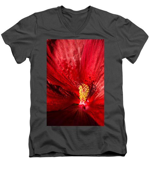 Passionate Ruby Red Silk Men's V-Neck T-Shirt