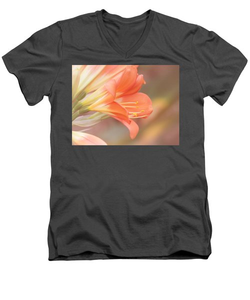 Pastels Men's V-Neck T-Shirt