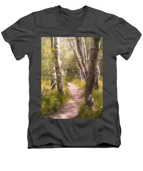 Men's V-Neck T-Shirt featuring the photograph Path 1 by Pamela Cooper