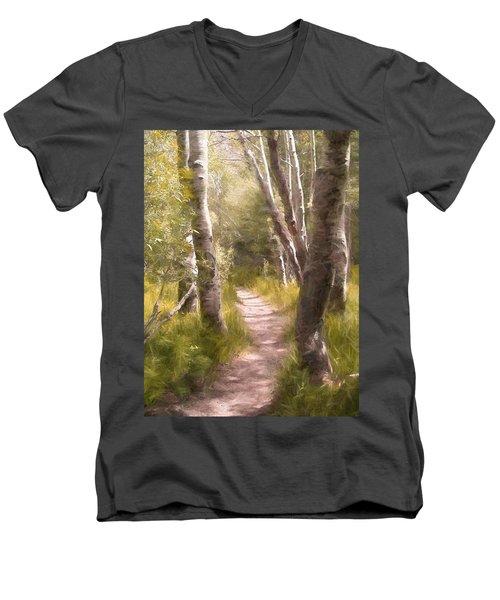 Path 1 Men's V-Neck T-Shirt by Pamela Cooper