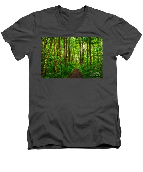 Path In Green Men's V-Neck T-Shirt by Sonya Lang