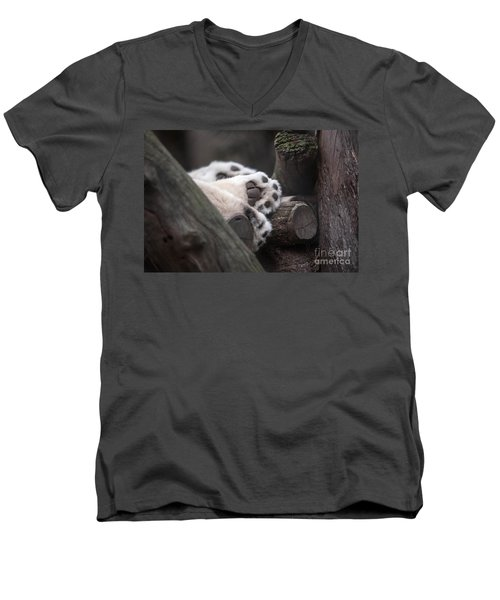 Paws For A Nap Men's V-Neck T-Shirt