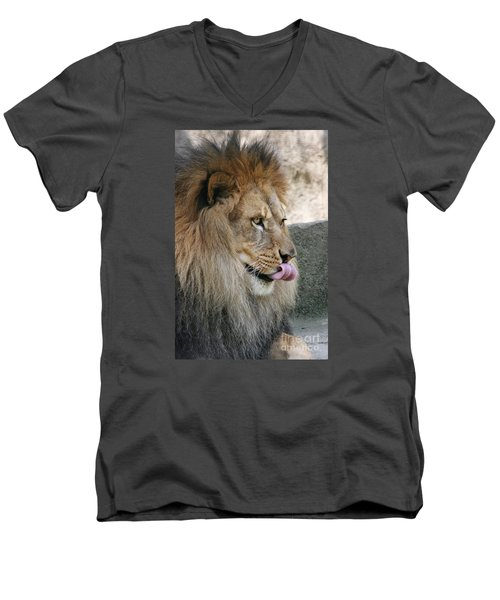 Men's V-Neck T-Shirt featuring the photograph Pbbbt by Judy Whitton