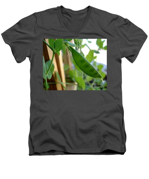 Pea Pod Growing Men's V-Neck T-Shirt