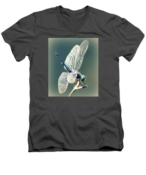Peaceful Pause Men's V-Neck T-Shirt by Melanie Lankford Photography