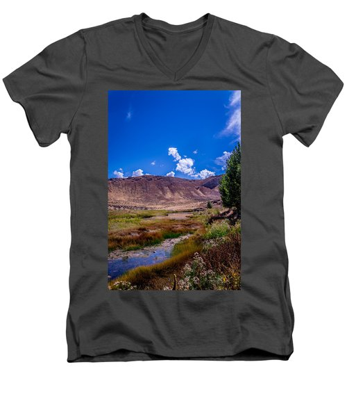 Peaceful Valley II Men's V-Neck T-Shirt
