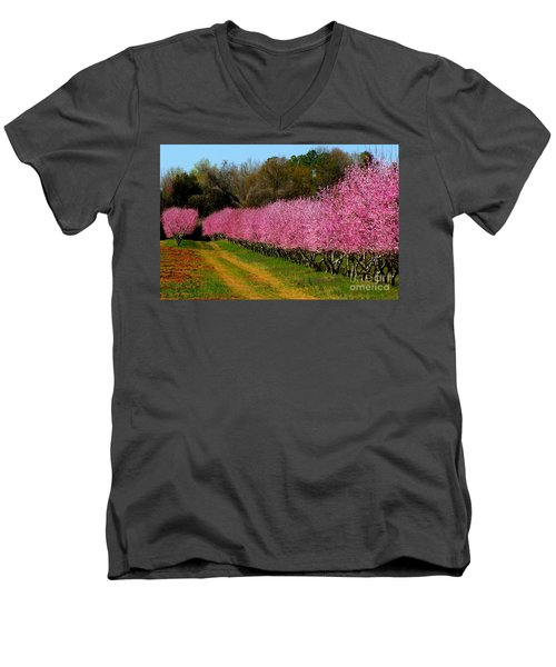 Men's V-Neck T-Shirt featuring the photograph Peach Orchard In Carolina by Lydia Holly