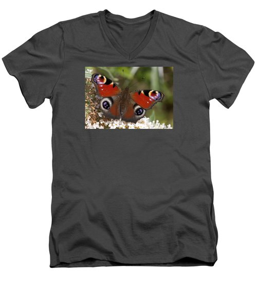 Peacock Butterfly Men's V-Neck T-Shirt by Richard Thomas
