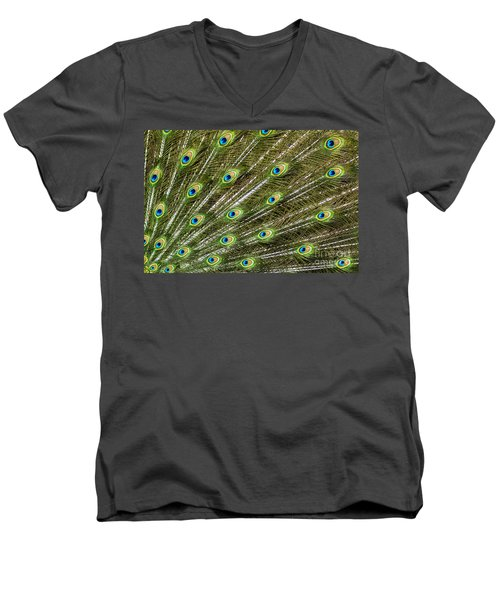 Peacock Feather Abstract Pattern Men's V-Neck T-Shirt