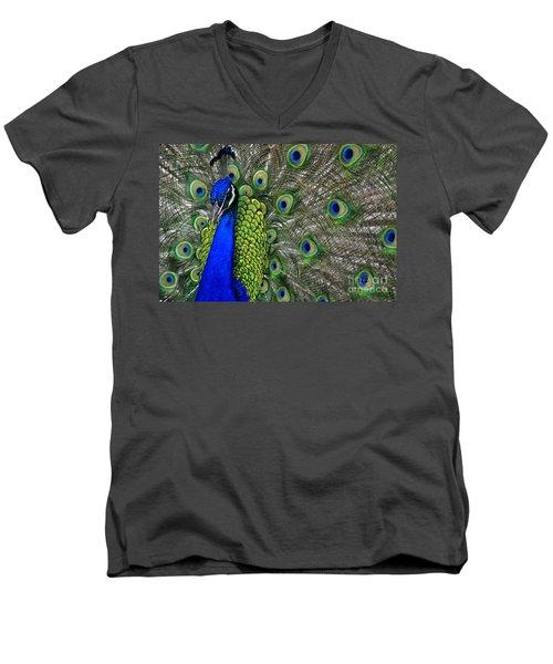 Peacock Head Men's V-Neck T-Shirt by Debby Pueschel