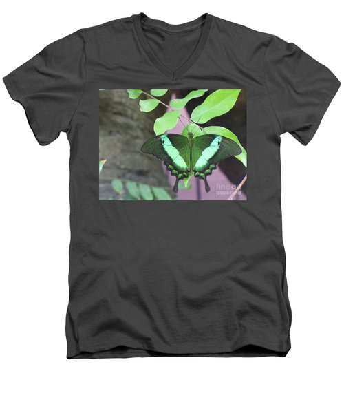 Men's V-Neck T-Shirt featuring the photograph Peacock Swallowtail by Lingfai Leung
