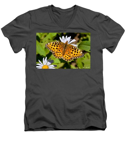 Pearl Border Fritillary Butterfly On An Aster Bloom Men's V-Neck T-Shirt by Jeff Goulden