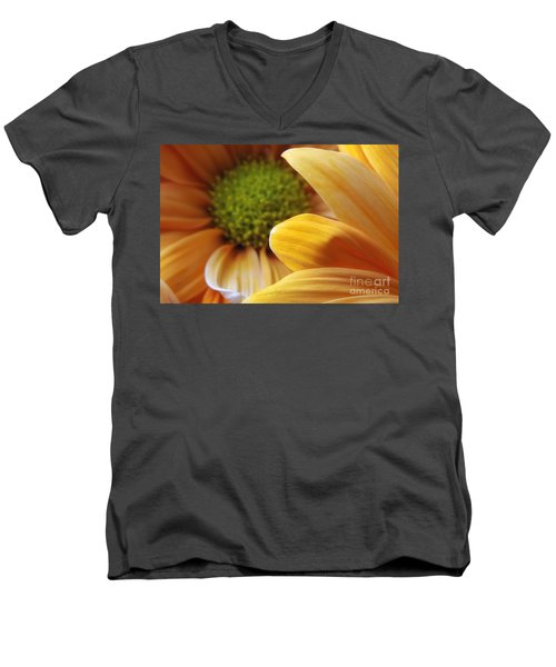 Peeking Through Men's V-Neck T-Shirt
