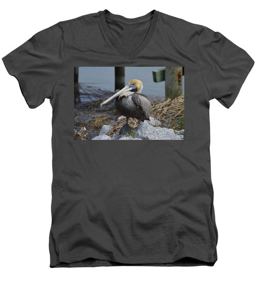 Pelican On Rocks Men's V-Neck T-Shirt