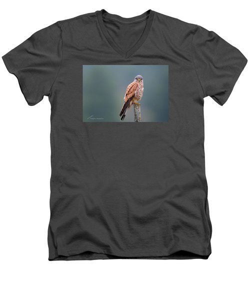 Perching Men's V-Neck T-Shirt